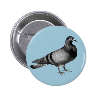 Vintage Pigeon gifts Button