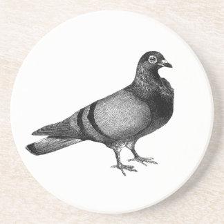 Vintage Pigeon gifts Coaster