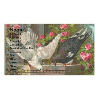 Vintage Pigeons Pack Of Standard Business Cards