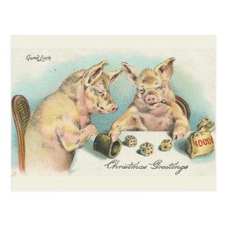 Vintage Pigs Playing Dice Postcard