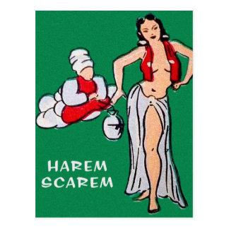 Vintage Pin up Pinup Girl Cartoon Harem Scarem Postcard