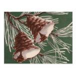 Vintage Pine Cone Christmas Bells Postcard
