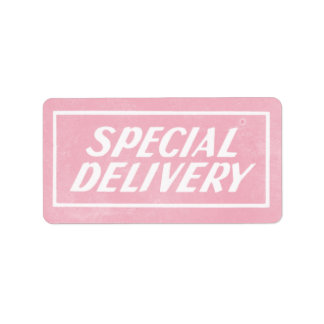 Vintage Pink Baby Girl Special Delivery Sticker Address Label
