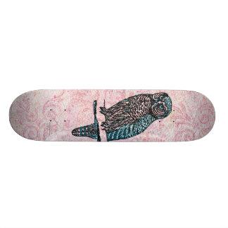 Vintage Pink Blue Cute Owl Skateboards