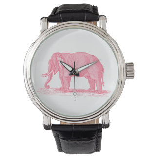 Vintage Pink Elephant 1800s Elephants Illustration Watch