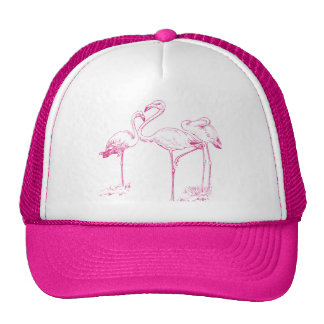 Vintage  Pink Flamingo Drawing Cap