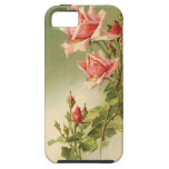 Vintage Pink Garden Roses for Valentine's Day iPhone 5 Covers