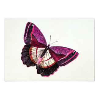 Vintage Pink Red Butterfly 1896 Blank Template 9 Cm X 13 Cm Invitation Card