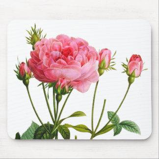 Vintage Pink Rose - Botanical Art Mouse Pad