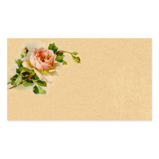 Vintage Pink Rose Business Profile Card Double-Sided Standard Business Cards (Pack Of 100)