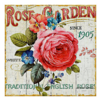 Vintage pink rose home office decor poster