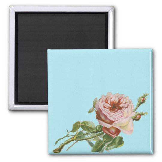 Vintage Pink Rose on Pale Aqua Magnet