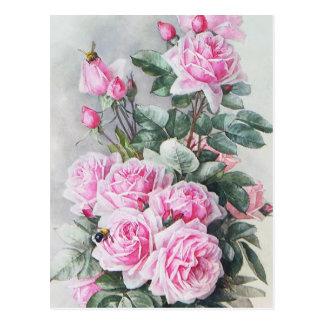 Vintage Pink Roses Bouquet Postcard