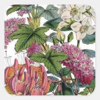 Vintage Pink White Victorian Flora Botanical Print Square Sticker