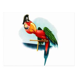 Vintage Pirate Parrot Parrots Postcard