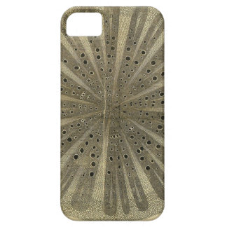 Vintage Plant Anatomy iPhone 5 Cases