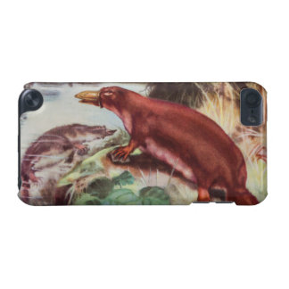 Vintage Platypus Illustration, Animal Drawing iPod Touch 5G Cover