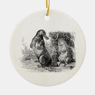 Vintage Platypus Porcupine Anteater Template Round Ceramic Decoration