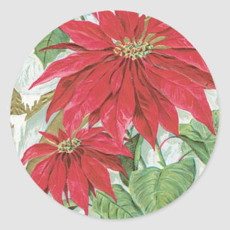 Vintage Poinsettia Illustration Classic Round Sticker
