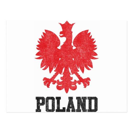 Vintage Poland Postcard