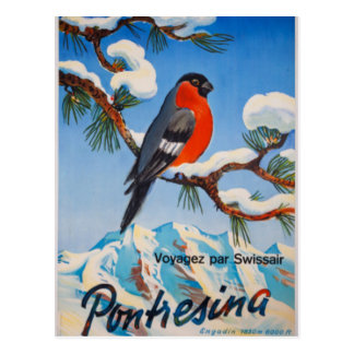 Vintage Pontresina Vacation Swiss Air Switzerland Postcard
