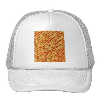 Vintage Pork I love Bacon Bacon Strips Hats