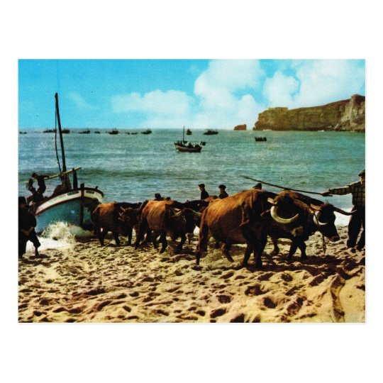 Vintage Portugal,   Nazare, beaching fishing boats Postcard