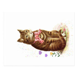 Vintage Postcard Classic Tabby Cat With Pink Bow