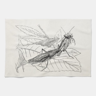 Vintage Praying Mantis Insect Template Tea Towel