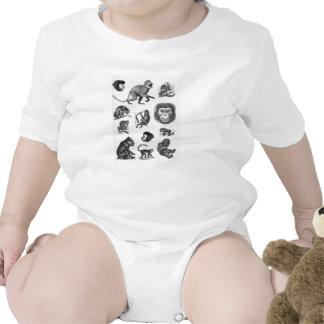 Vintage Primate Illustration Baby Bodysuits