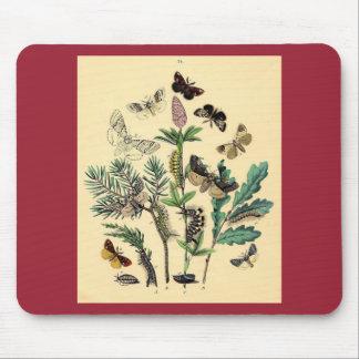 Vintage Print - Bohemian Moths & Butterflies Mouse Pad