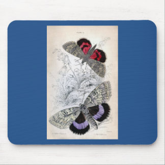Vintage Print - Lepidoptera - Moths & Butterflies Mouse Pad