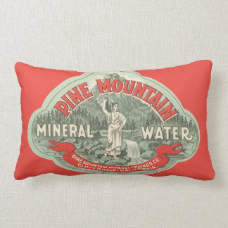 Vintage Product Label, Pine Mountain Mineral Water Lumbar Pillow