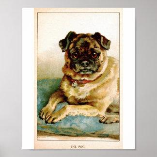 Vintage Pug Love Poster