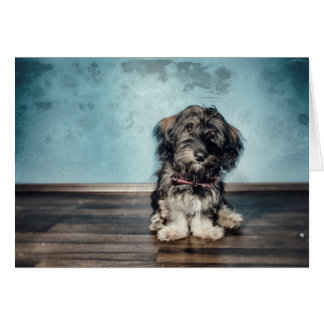 Vintage Puppies Note Cards