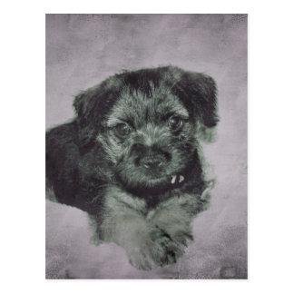 Vintage puppy postcard