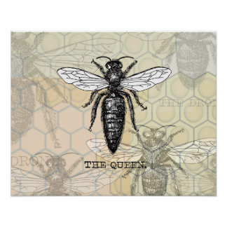 Vintage Queen Bee Illustration Poster