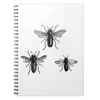 Vintage Queen Bee & Working Bees Illustration Spiral Note Books