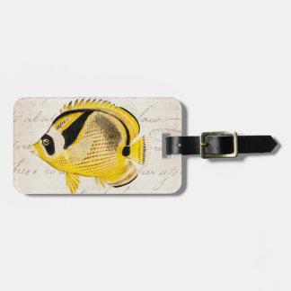 Vintage Raccoon Butterfly Fish - Antique Hawaiian Luggage Tag
