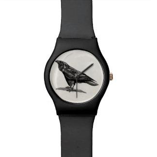 Vintage Raven Crow Blackbird Bird Illustration Wristwatch