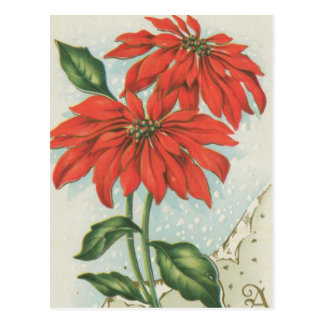 Vintage Red Christmas Poinsettias Post Cards