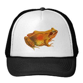 Vintage Red Frog Illustration Trucker Hats