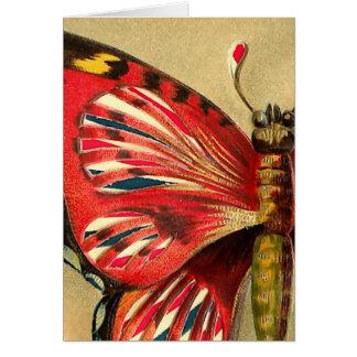 Vintage Red Moth Card