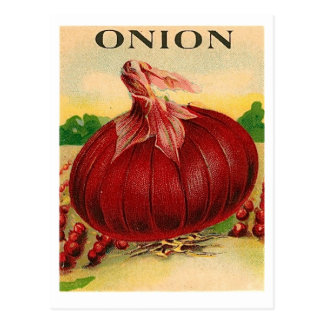 vintage red onion seed packet postcard