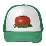Vintage Red Ripe Tomato, Food Fruits Vegetables Trucker Hats