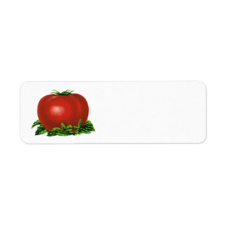 Vintage Red Ripe Tomato, Vegetables and Fruits