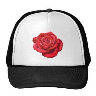 Vintage Red Rose Painted Illustration Mesh Hats