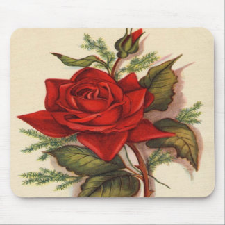 Vintage, Red Rose, Wife Birthday Mouse Pad