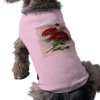 Vintage, Red Roses, Girlfriend Birthday Pet T Shirt