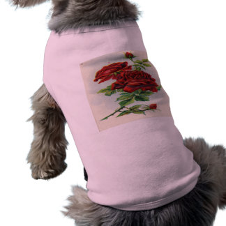 Vintage, Red Roses, Girlfriend Birthday Sleeveless Dog Shirt